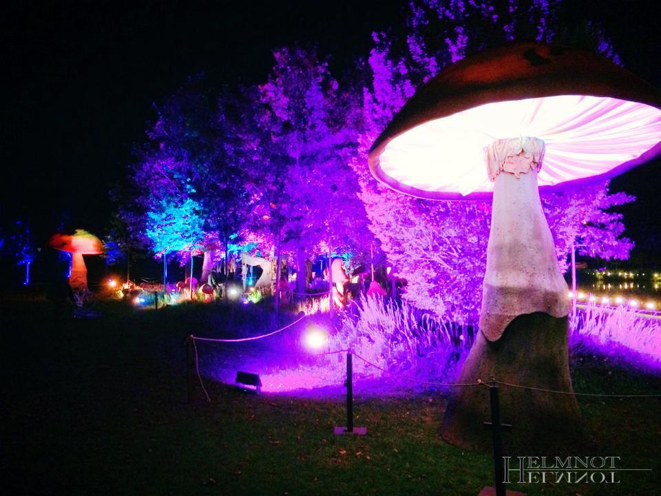 Lichttechnik für Stimmungsvolle Abende beim Outdoor-Event Herbstfunkeln